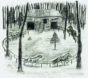 About my artwork croquis-ranch.721-300x267
